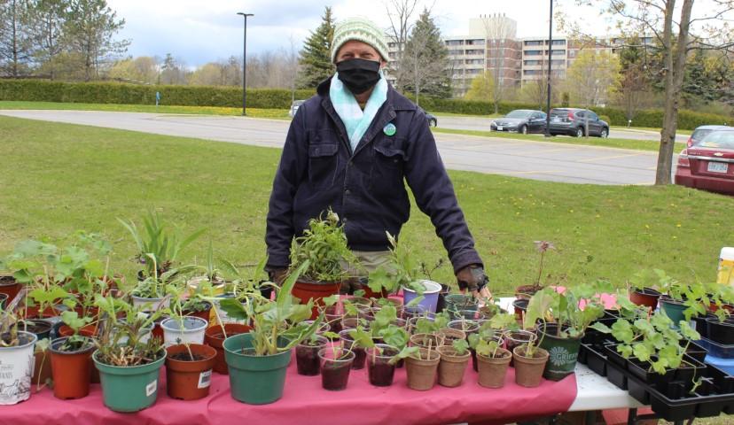 Plant sale table with vendor