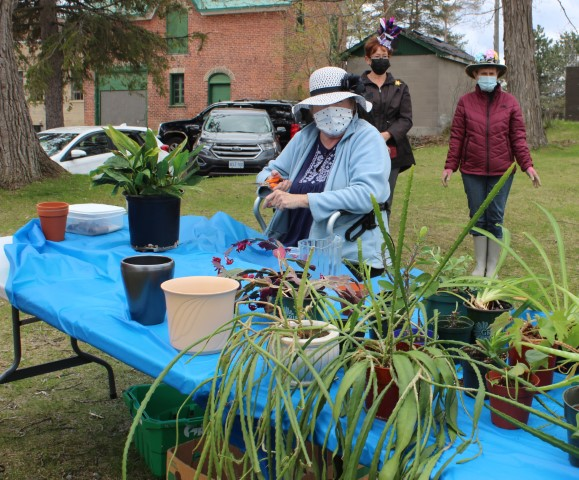 Plant sale table customers