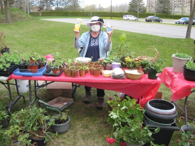 Plant Sale Plants with sanitation supplies
